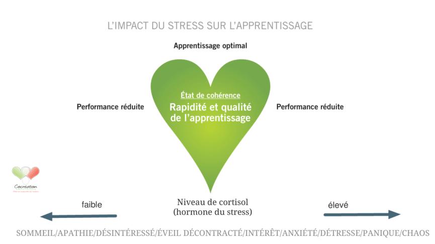 cb02a8a43a5 L impact du stress sur l apprentissage - Cocrea.ca - Cocreation ...